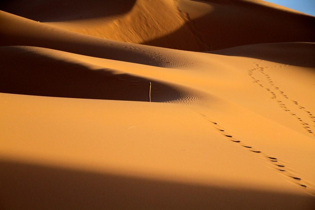 sahara desert dunes at erg chebbi