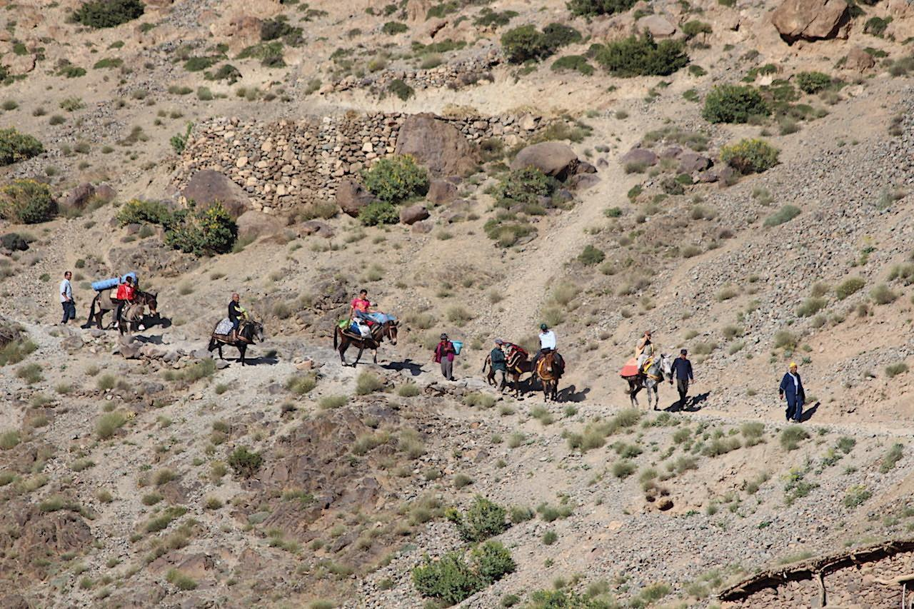 high atlas wedding procession