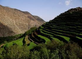 terraced cultures morocco